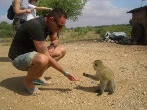SAFARI IN AFRICA, SCIMMIA