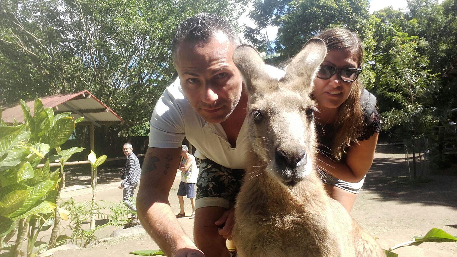 Koala Gardens Queensland, SELFIE CON CANGURO