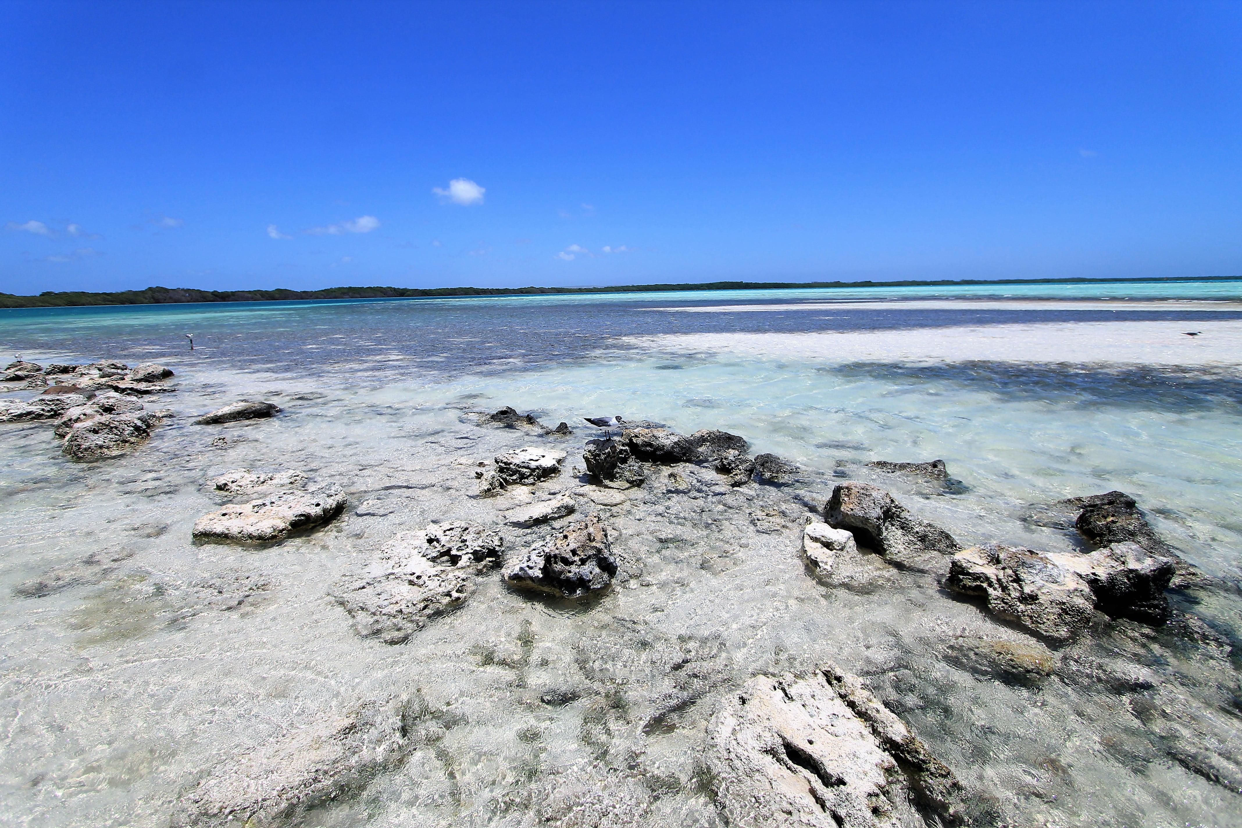 Lac Bay Antille Olandesi
