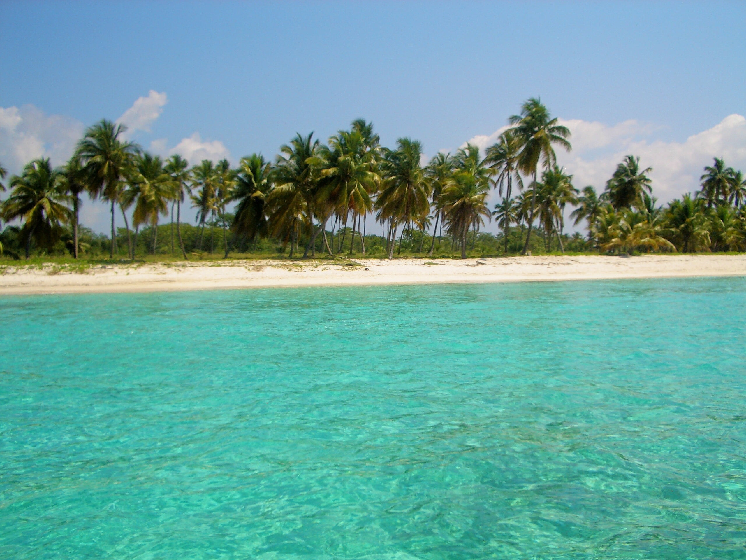 ISOLA DI SAONA REPUBBLICA DOMINICANA escursione da BAYAHIBE