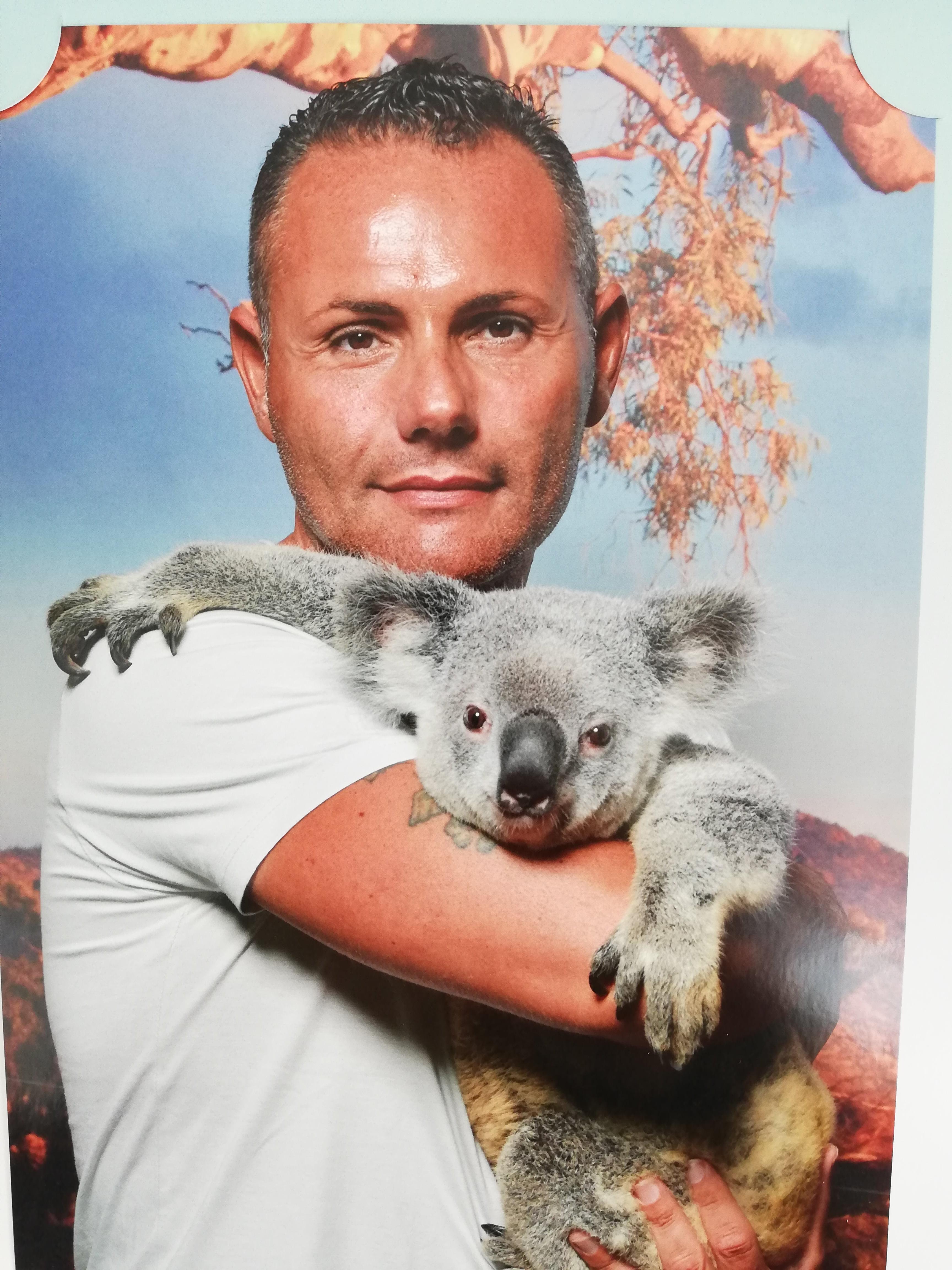 Koala Gardens , UN KOALA IN BRACCIO