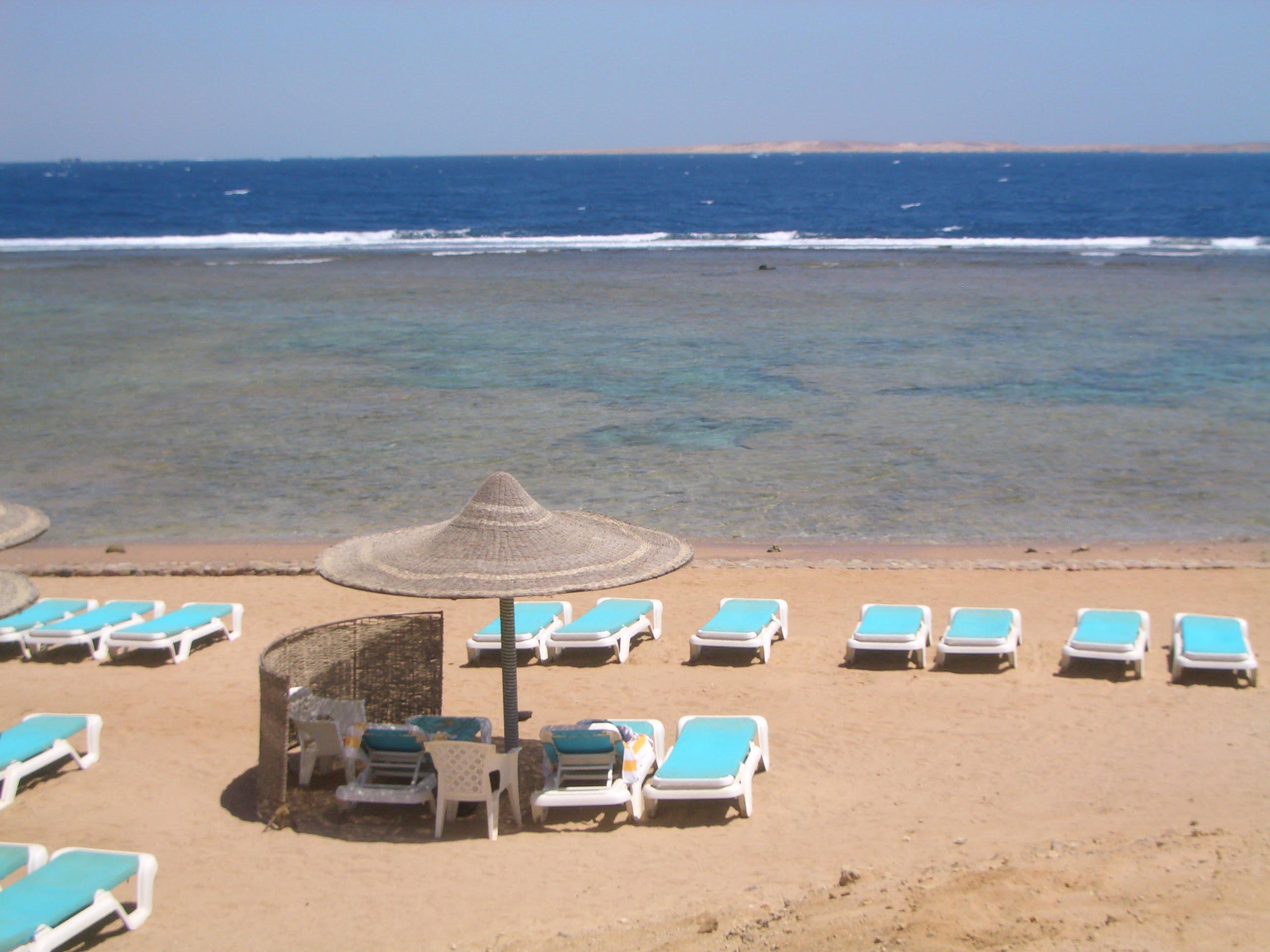 Sharm El Sheikh mare, spiaggia del Sea Life Resort