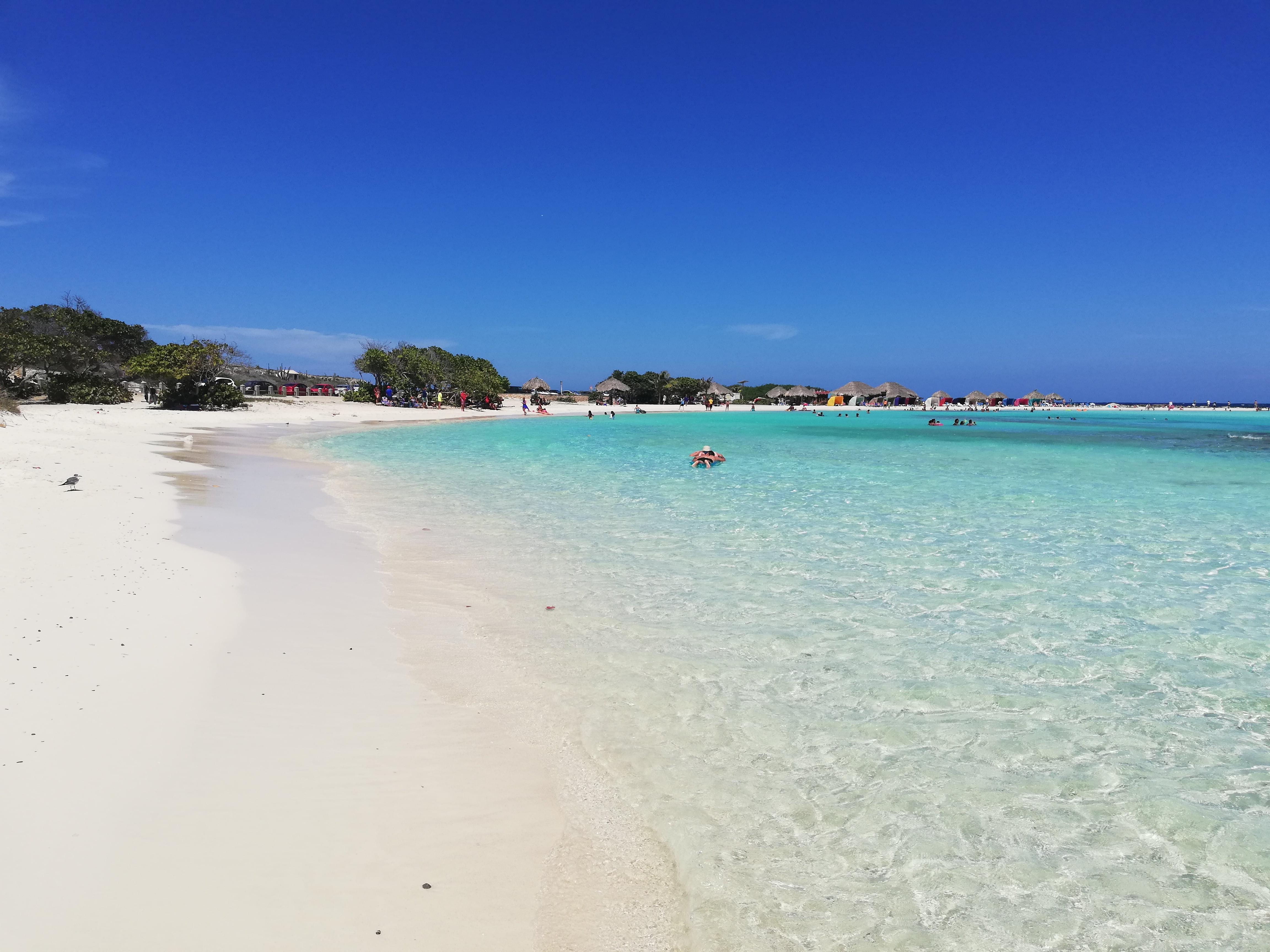 BABY BEACH ARUBA, ACQUA TURCHESE E SABBIA BIANCA